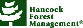 Hancock Management